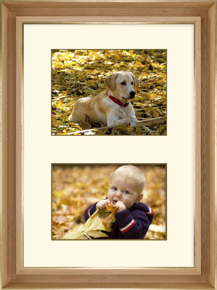 Baby and Dog in Leaves Framed